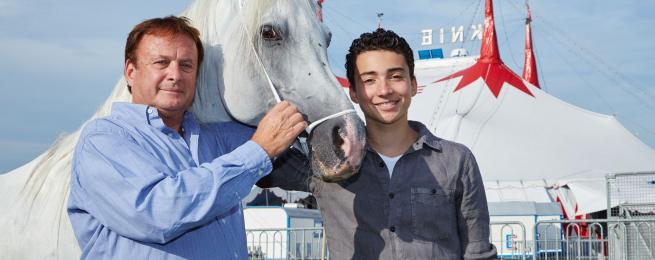 Les chevaux rois au Festival du Cirque