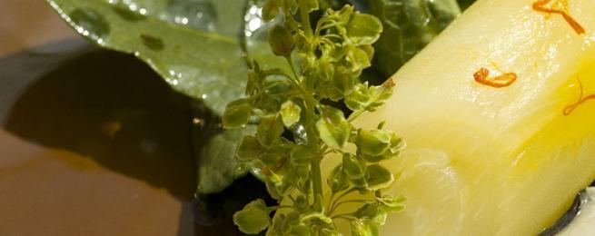 Aile de raie pochée au bouillon de légumes, salade de pousses d'épinards