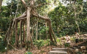 Cambodge,Véritable paradis préservé
