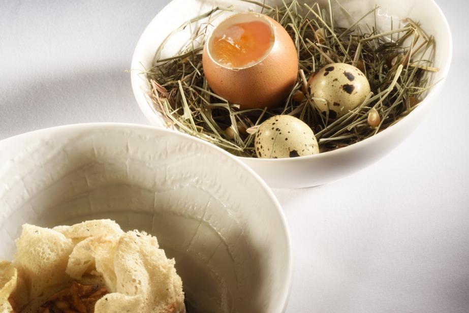 Œuf fermier, champignons des bois, éclats de noix, parmesan