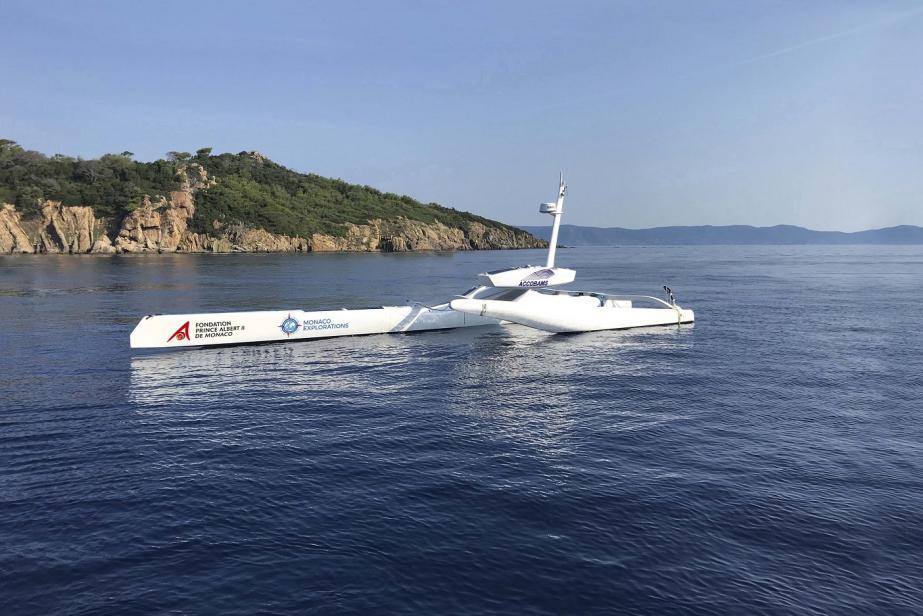 Sphyrna Odyssey: des drones pour écouter les cétacés!